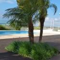 Vue piscine 3